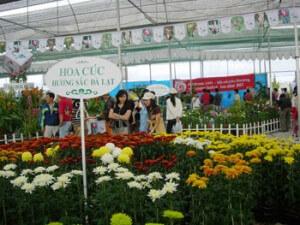 festival des fleurs à Da Lat Vietnam