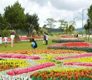 festivals des vleurs à Da Lat Vietnam