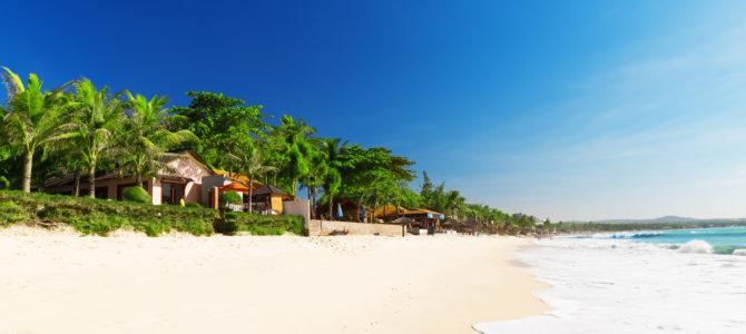 6 raisons de visiter le Vietnam en janvier